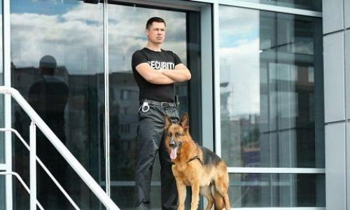 Maître chien by Senart Protection